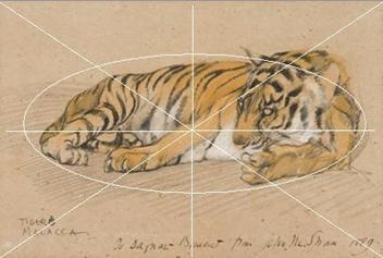 爬行动物馆等等……1817年至